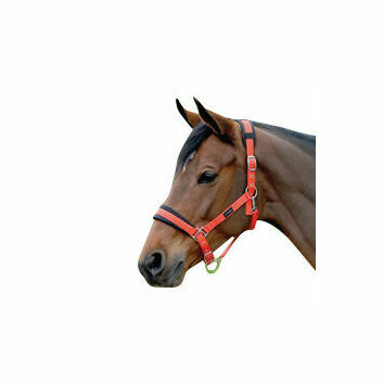 Cottage Craft Headcollar Padded Red