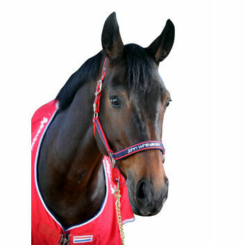 Whitaker Headcollar Padded Fleece Red/Navy