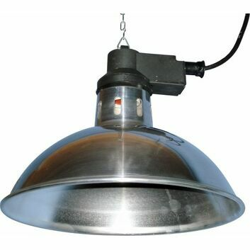 Intelec Traditional Infra-Red Lamp 11.3/4 Inch Shade