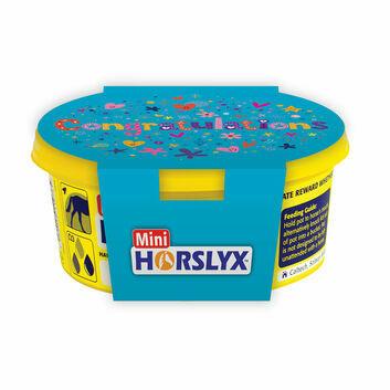 Horslyx Mini Gift Sleeves Congratulations