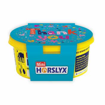Horslyx Mini Gift Sleeves Thank You