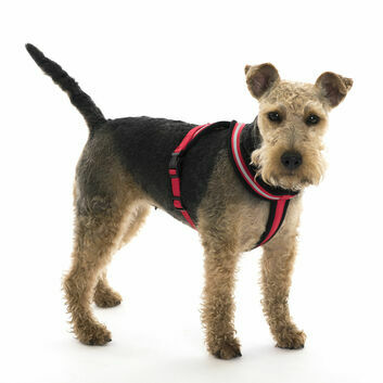 Comfy Harness Red