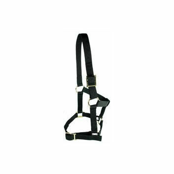 Cottage Craft Headcollar Economy Black