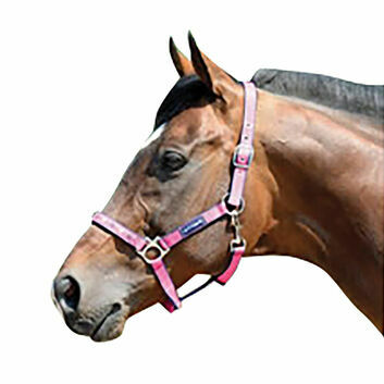 Cottage Craft Headcollar Galaxy Pink