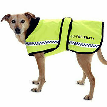Equisafety Polite Hi-Vis Reflective Quilted Dog Rug