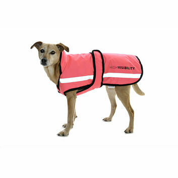 Equisafety Waterproof Hi-Vis Reflective Quilted Dog Rug