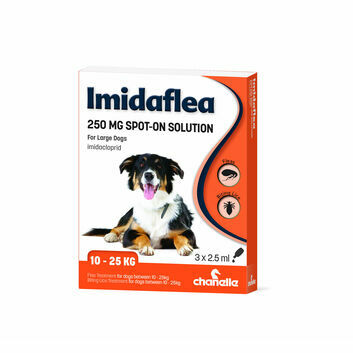 Imidaflea 250Gm Spot-On For Large Dogs 10-25Kg