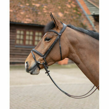 Mark Todd Bridle Flash Leonidas Ii Brown