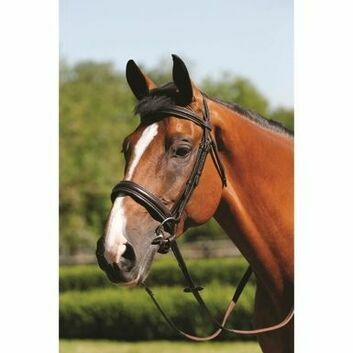 Mark Todd Bridle Padded Cavesson Brown