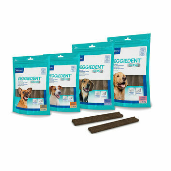 Veggiedent Fr3Sh Chews For Dogs 15 Chews