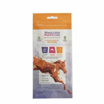 Westgate Laboratories Pinworm Test Kit (New)