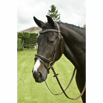 Whitaker Lynton Flash Bridle C/W Spare Browband Black