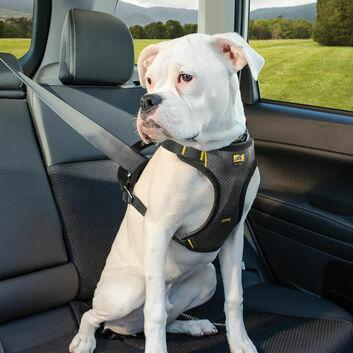 Kurgo Impact Seatbelt Harness Black