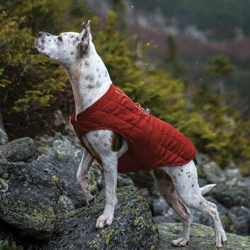 Kurgo Loft Jacket Chili Red/Charcoal