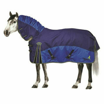 Masta Turnout Rug Fieldmasta 100 Gm Fixed Neck Navy/Royal
