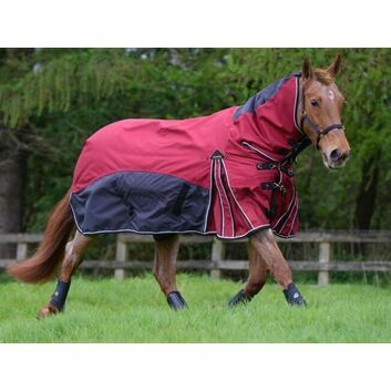 Masta Turnout Rug Fieldmasta 350 Gm Fixed Neck Red/Graphite