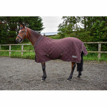 Whitaker Stable Rug Bournville 200 Gm Chocolate
