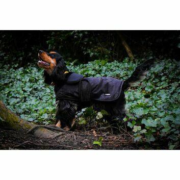 Whitaker Dog Coat Sydney Black Camo