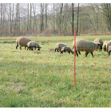 50m x 90cm PEL Electric Sheep Netting
