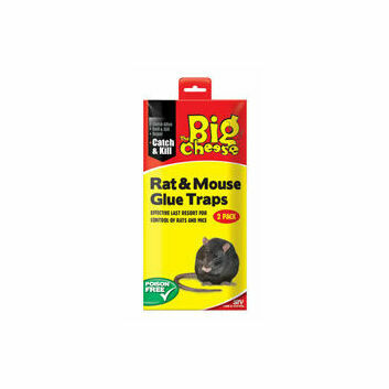 The Big Cheese RTU Rat & Mouse Glue Trap - Twin Pack