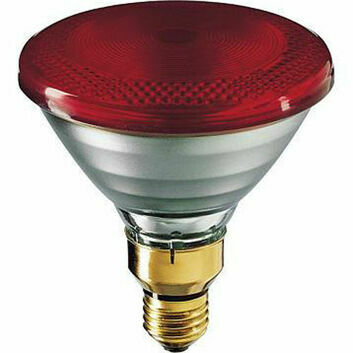 Philips E27 Economy Infrared Heat Lamp - 100w/175w