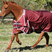 Guardian Equestrian Electric Fence Buster Turnout Rugs additional 1