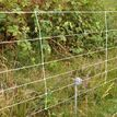 Gallagher Electric Fence Earth Clamp additional 2