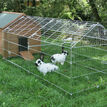 Galvanised Outdoor Poultry & Pet Animal Pen/Run additional 3