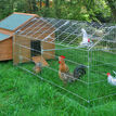 Galvanised Outdoor Poultry & Pet Animal Pen/Run additional 2