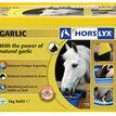 Horslyx Garlic Lick additional 1