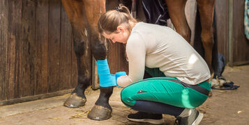 Basic First Aid for Horses