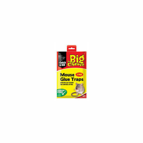 The Big Cheese RTU Mouse Glue Trap - Twin Pack