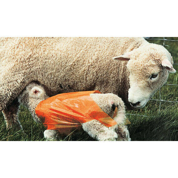 100 x Ritchey Waterproof Lamb Covers