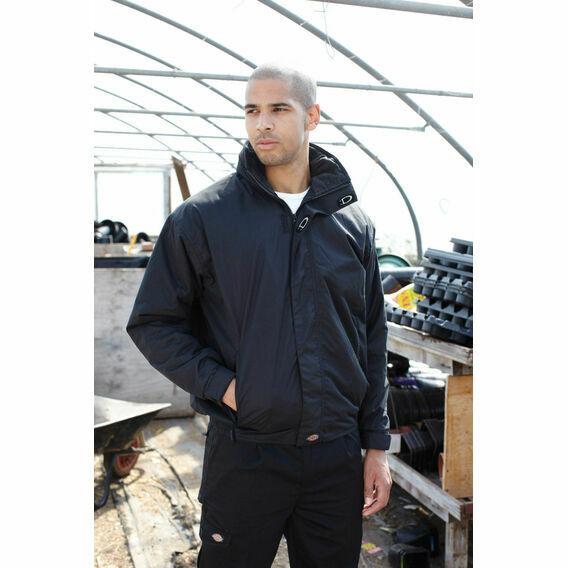Dickies Cambridge Jacket - Black